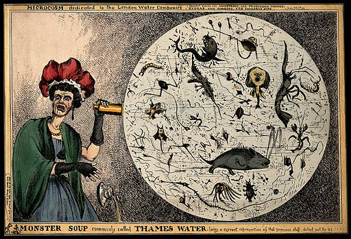 monster_soup_commonly_called_thames_water-_wellcome_v0011218